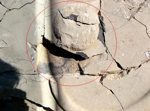 Persepolis Damages
