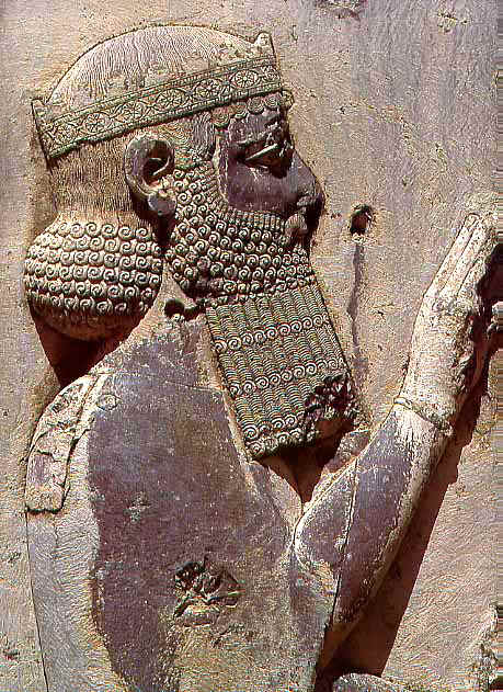 PERSIAN WARS: The Strategy of Darius the Great - (The ...